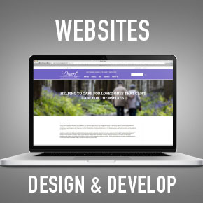 Professional website design and development in Arizona, mesa, tempe, chandler, gilbert.